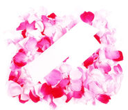 Empty white card in roses petals Royalty Free Stock Image