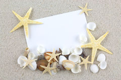 Empty white card with starfishes and seashells on the beach Royalty Free Stock Image