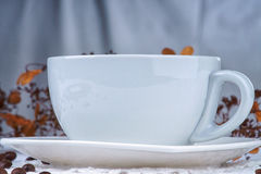 Empty white cup among coffee beans Royalty Free Stock Image