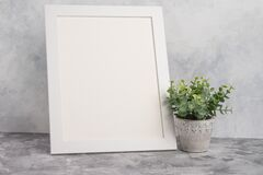 Free Empty White Frame With Flower On Wall Background. The Concept Of Design And Font Inscriptions And Image Placement Royalty Free Stock Image - 184170896