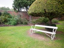 An empty white long bench in the garden with a tree and lawn Royalty Free Stock Photography