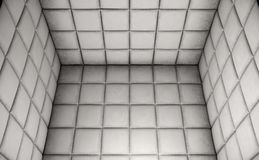 Empty Padded Cell Royalty Free Stock Images