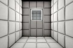 Empty Padded Cell Shut Door Royalty Free Stock Images