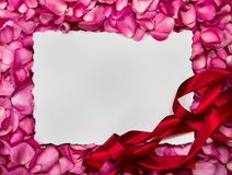 Empty white paper frame with  sweet pink roses  petal  , romance. And love card concept Stock Photography