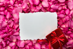 Empty white paper love card place on red petals roses Royalty Free Stock Photography
