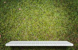 Empty shelf on green grass for product display royalty free stock images