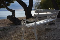 Empty white wooden bench stock images