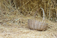 Empty wicker basket Stock Photos