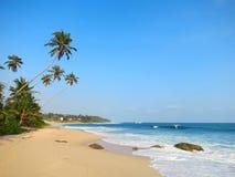 Empty wide clean beach with palms, Kamburugamuwa Stock Images