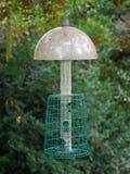 Empty wild bird feeder hanging from trees. stock photo