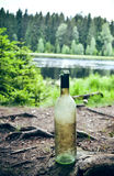 Empty wine bottle in nature Royalty Free Stock Images