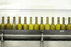 Empty wine bottles on a filling line Royalty Free Stock Photo
