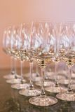 Empty wine glasses. Royalty Free Stock Photo