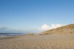Free Empty Winter Beach Sylt, Germany Royalty Free Stock Photo - 48026925