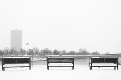 Empty Winter Bench. Empty benches in portland along willamette river Royalty Free Stock Image