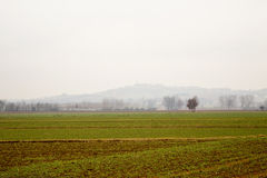 Empty winter fields with hills on the back Stock Photos