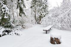 Empty winter garden Royalty Free Stock Image