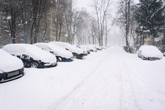 Empty winter street Stock Images