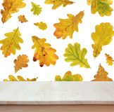 Empty wood table on background of flying autumn oak leaves. Empty of wood table top on the background of flying autumn oak leaves. For montage product display Royalty Free Stock Photography
