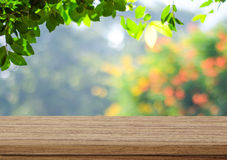 Empty wood table over blurred trees with bokeh background. Product display template royalty free stock image
