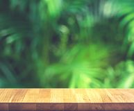 Empty of wood table top on beautiful tropical leaf from garden. Backgrounds.For montage product display or key visual layout royalty free stock image