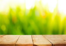 Wood table top and blur of fresh green bokeh from garden. Empty of wood table top on blur of fresh green abstract background from grass with sunlight.For montage royalty free stock images
