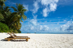 Empty wooden beach chairs on the tropical beach, vacation. Traveler dreams concept royalty free stock photo