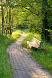 Empty wooden bench. In a park Royalty Free Stock Photography