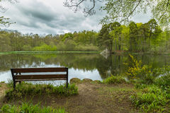 Empty Wooden Bench Beside Calm Lake. Empty wooden bench facing out to calm lake surrounded by trees with reflections on the water surface Royalty Free Stock Photography