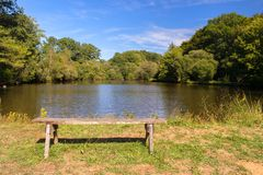 Empty wooden bench. In front of nature lake Stock Photo