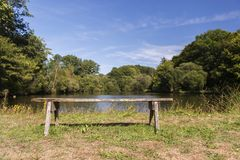 Empty wooden bench. In front of nature lake Stock Photography