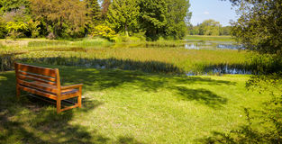 Empty wooden bench in the park. Empty wooden bench in front of a pond in summertime Royalty Free Stock Photo
