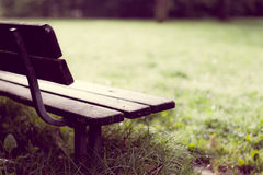 Empty Wooden Bench in Park After Rain Stock Photos