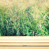 Empty wooden bench in a Park - retro filter. Stock Photo