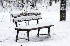 Empty wooden bench in Park in winter is covered with  snow Stock Images