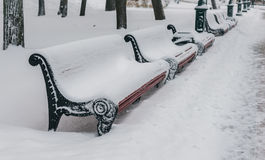 Empty wooden benches under snow Royalty Free Stock Images