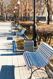 Empty wooden benches in urban park Royalty Free Stock Photos