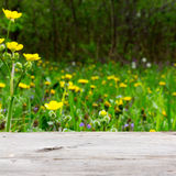 Empty wooden board on a background of meadows with flowering herbs Royalty Free Stock Photography