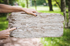 Empty wooden board hold by woman hand. Template mock up Royalty Free Stock Images