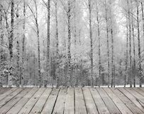 Empty wooden board table and birch trees. In snow-covered winter wood royalty free stock image