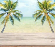 Empty wooden with coconut tree and sea background for product display. Stock Image