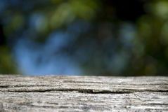 Empty wooden deck table with foliage bokeh background Royalty Free Stock Images