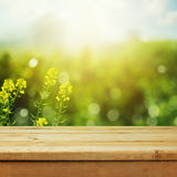 Empty wooden deck table over green meadow bokeh background for product montage display. Spring or summer season stock image
