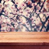 Empty wooden deck table over spring blossom flowers bokeh background. Empty wooden deck table over spring blossom flowers background stock image