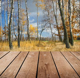Empty wooden deck table in the park. Stock Photography