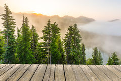 Empty wooden deck table top Ready for product display montage with forest background. Stock Photo