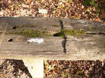 Empty wooden end of bench outside grass background Stock Photos