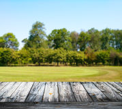 Empty wooden floor against green forest with meadow Royalty Free Stock Image