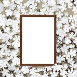 Wooden frame and flower Royalty Free Stock Photography