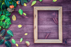 Empty wooden frame on brown wood surface among green and yellow Royalty Free Stock Images